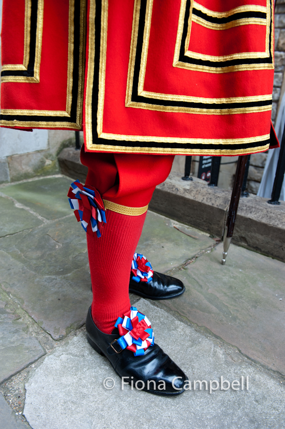 State dress detail.  Leather shoes with red white and blue rosettes.